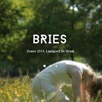 Bries