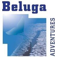 Beluga Adventures