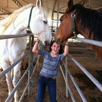 California Equine Retirement Foundation