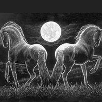 Moonstruck Meadows