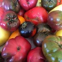 Flowerdust Fruit Market