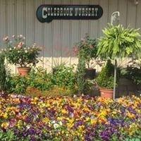 Colebrook Nursery