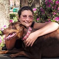 Mutt Master - Dog Training from A to Z