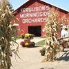 Ferguson's Orchards - Galesville