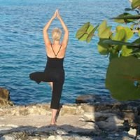 "Yoga and Healing Touch as ""Holistic Health Options"""