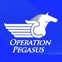 Operation Pegasus