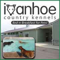 Ivanhoe Country Kennels