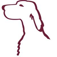 DeCoverly Kennels English Setters