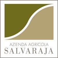 Salvaraja