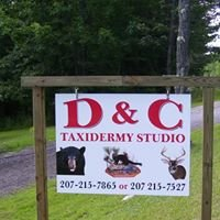 D & C Taxidermy Studio