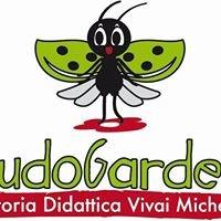 Michelini Floricoltura Vivai - Ludogarden Fattoria Didattica