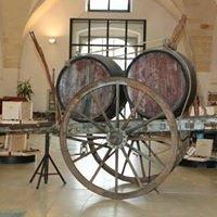 Museo della Civiltà del Vino Primitivo