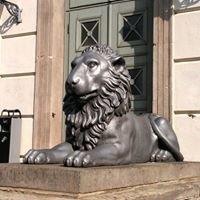 Löwengebäude MLU
