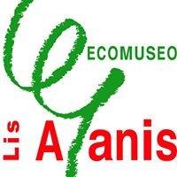 Lis Aganis - Ecomuseo Regionale delle Dolomiti Friulane