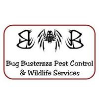 Bug Busterzzz