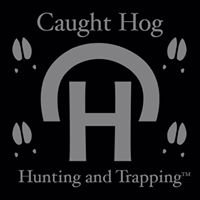 Caught Hog Hunting And Trapping