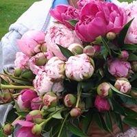 Ravenswood Flower Farm