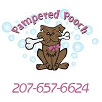 Pampered Pooch: Dog grooming, daycare, boarding Gray & Greater Portland ME