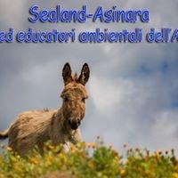 Sealand Asinara