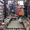 Libreria Fogola Pisa