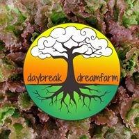 Daybreak Dreamfarm