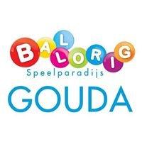 Ballorig Gouda