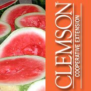 Clemson Extension Services - Hampton County