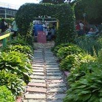 New Vision Garden