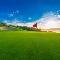 MotiV8 Junior Golf Coaching and Consulting