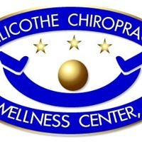 Chillicothe Chiropractic & Wellness Center, Inc.