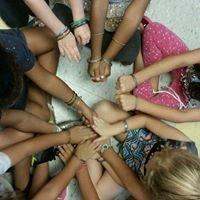 Palm Harbor Montessori Academy