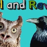 Owl and Raven