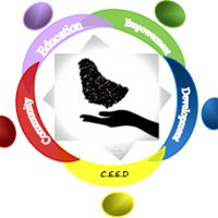 Community Education Empowerment & Development - CEED