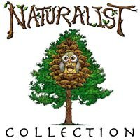 Naturalist Collection and Antiques by Pen Holler Timber, LLC