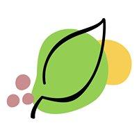 Harmony Health Chiropractic & Massage
