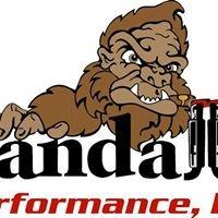 Randall's Performance