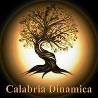 Calabria dinamica