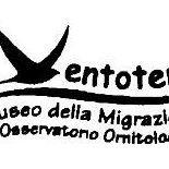 Museo della Migrazione e Osservatorio Ornitologico - Ventotene