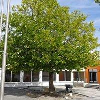 Quartiersmanagement Soziale Stadt Kitzingen-Siedlung