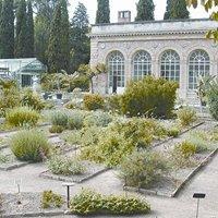 Jardin des plantes de Montpellier