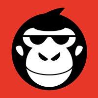 Monkey Partner