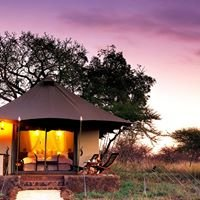 White Elephant Safari Lodge & Bush Camp