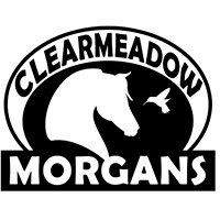 Clearmeadow Morgans and Riding Academy