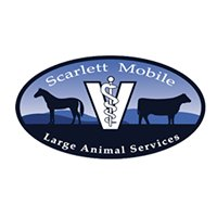 Scarlett Mobile Large Animal Services