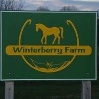 Winterberry Farm