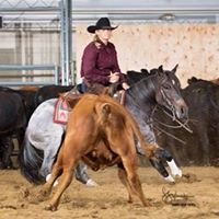 Cara Brewer Cutting Horses