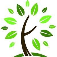 Cameron Park Community Foundation