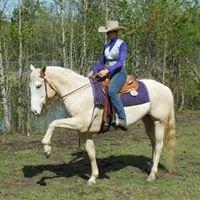 StarDutch Equine - Western Dressage