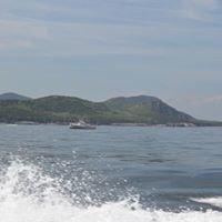Newman Marine Brokerage - A Boat Brokerage Firm In Southwest Harbor On Mount Desert Island, Maine