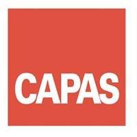 CAPAS Centro per le Attività e le Professioni delle Arti e dello Spettacolo